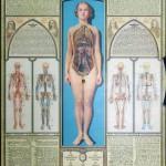 Medicine Illuminated
