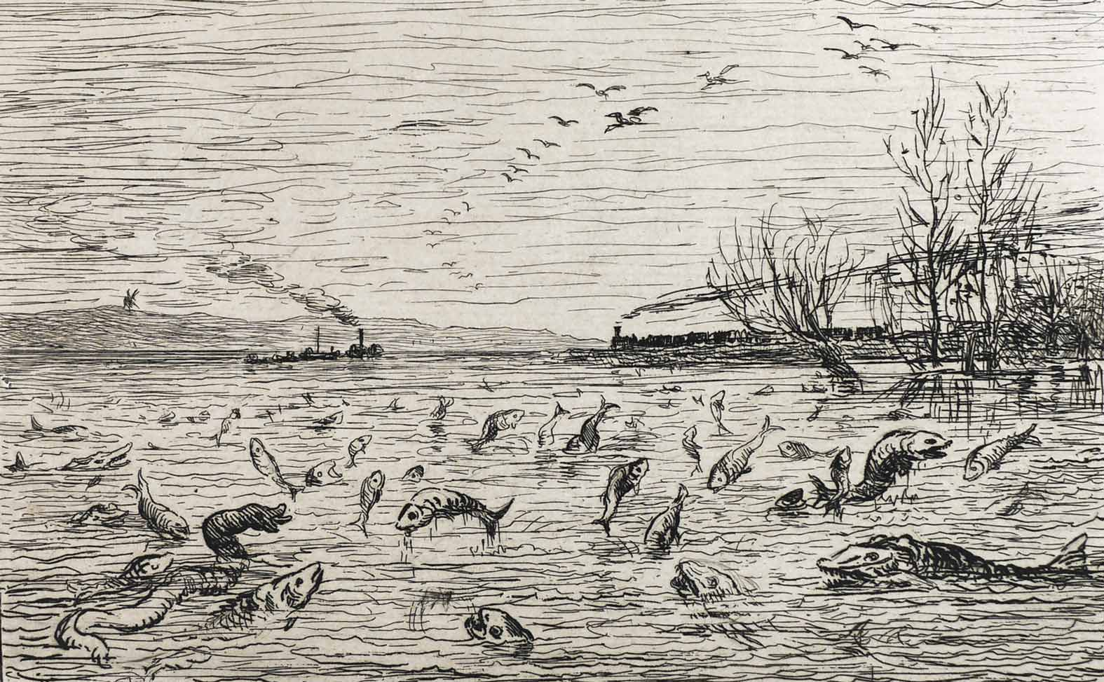 3-Daubigny-Boat-prints-048-Fish-Rejoicing