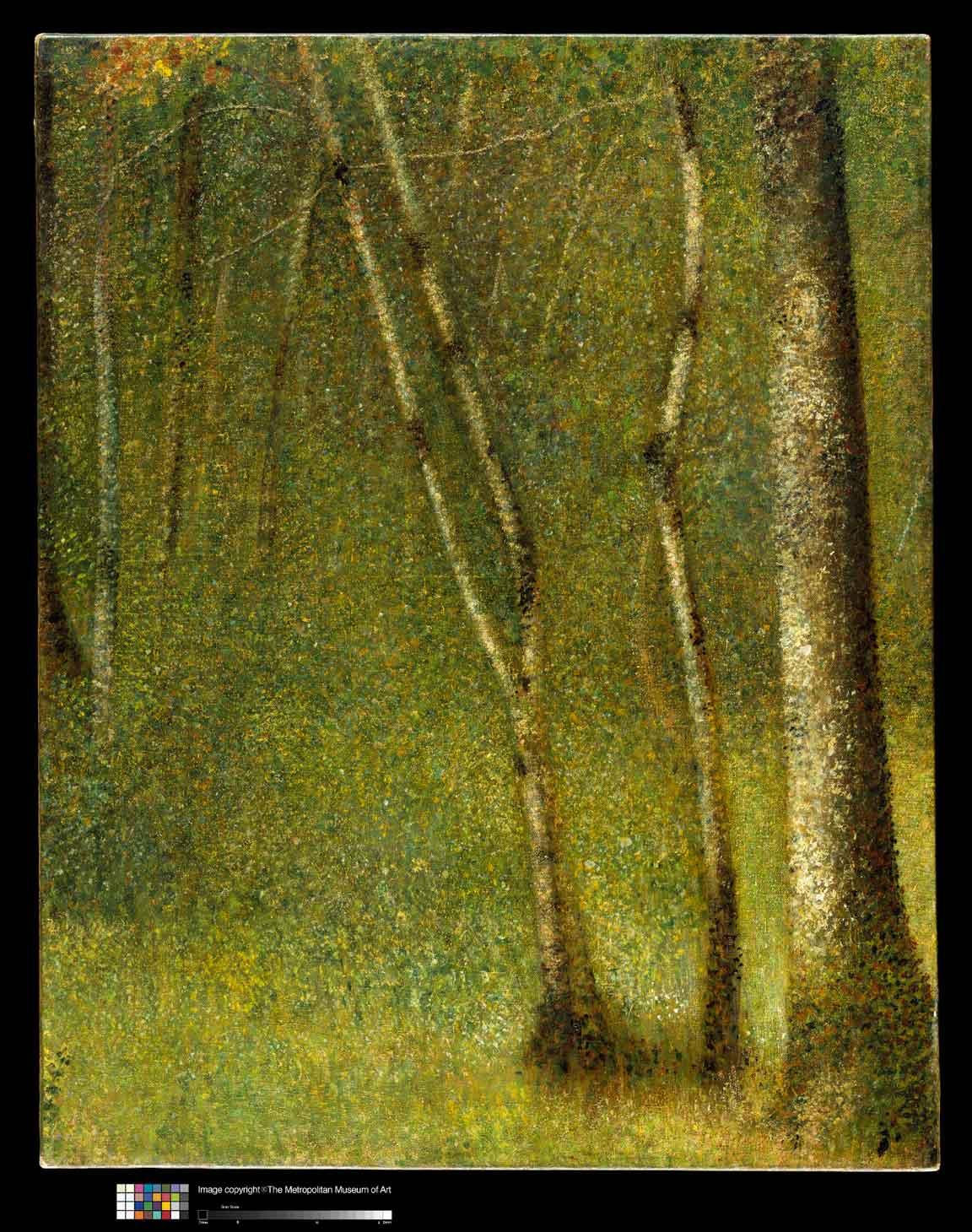 5-Seurat-ForestAt-PontAubert-1881