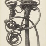 "Unnatural Worlds: ""No Two Alike: Karl Blossfeldt, Francis Bruguiere, Thomas Ruff"" at Contemporary Arts Center, September 21, 2018-January 13, 2019"