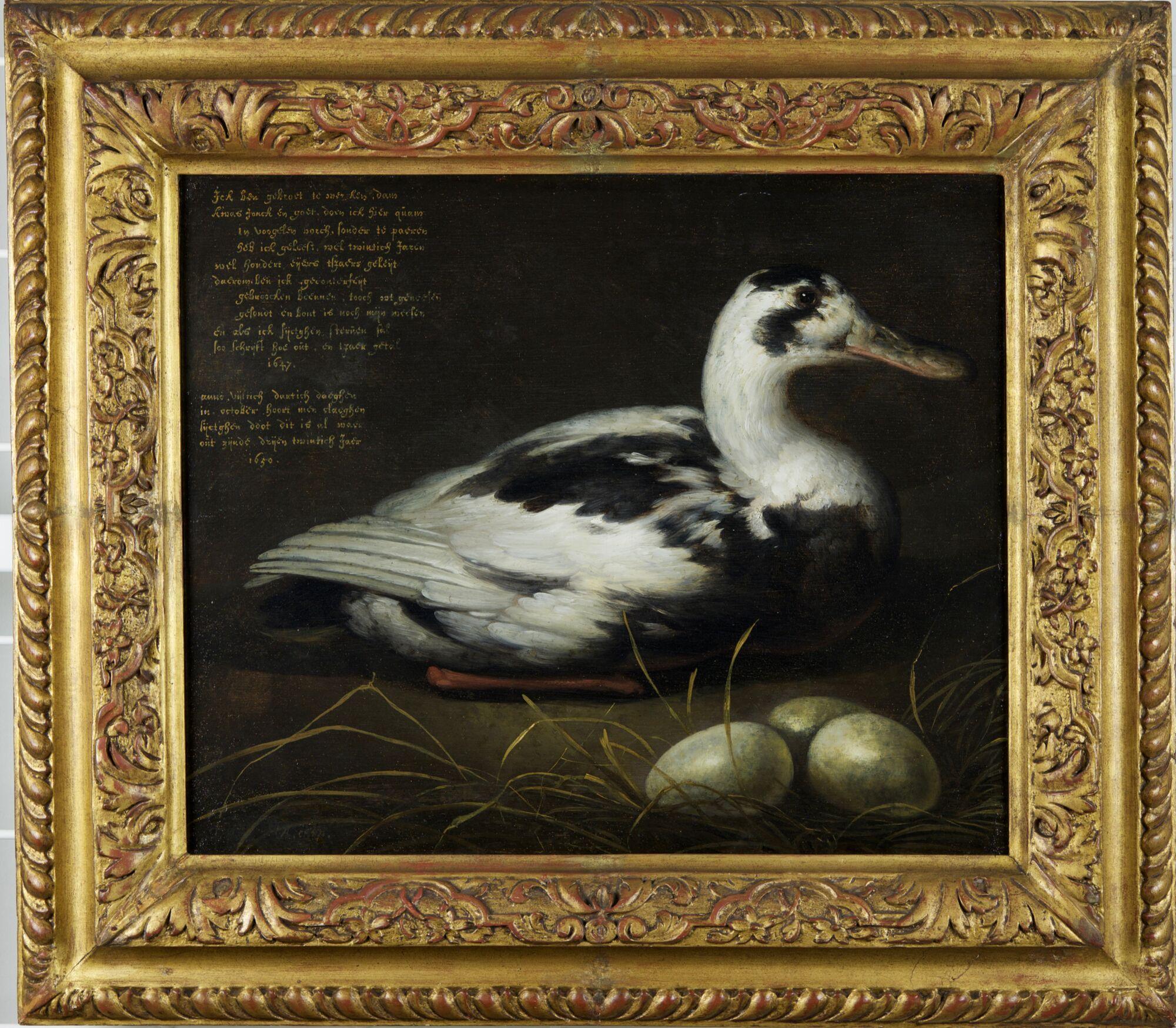 2 AgeRembrandt-AelbertCuyp-PortraitOfThe20YearOldDuck-1647