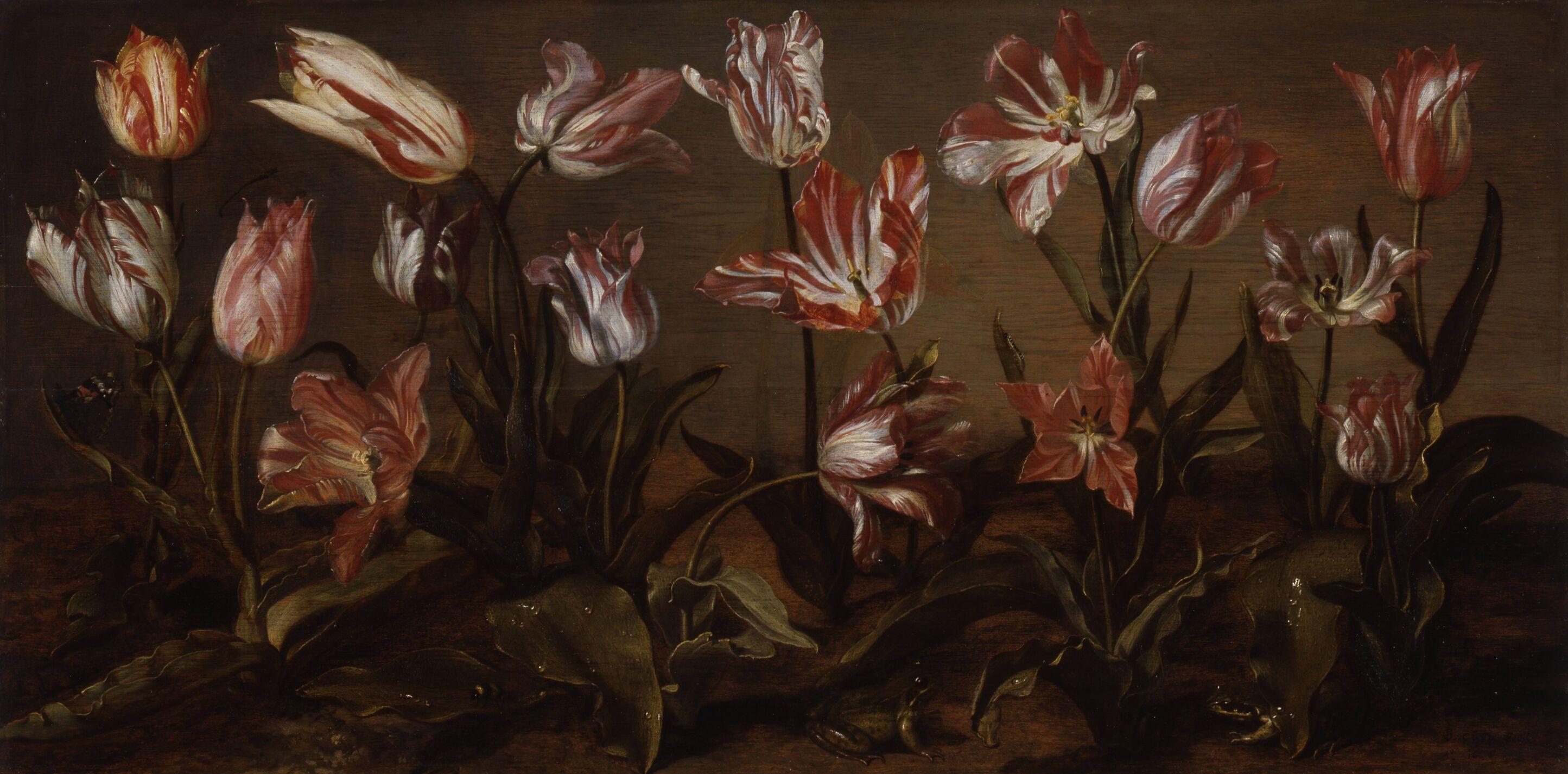 4AgeRembrandt-JacobGerritszCuyp-BedOfTulips-1638