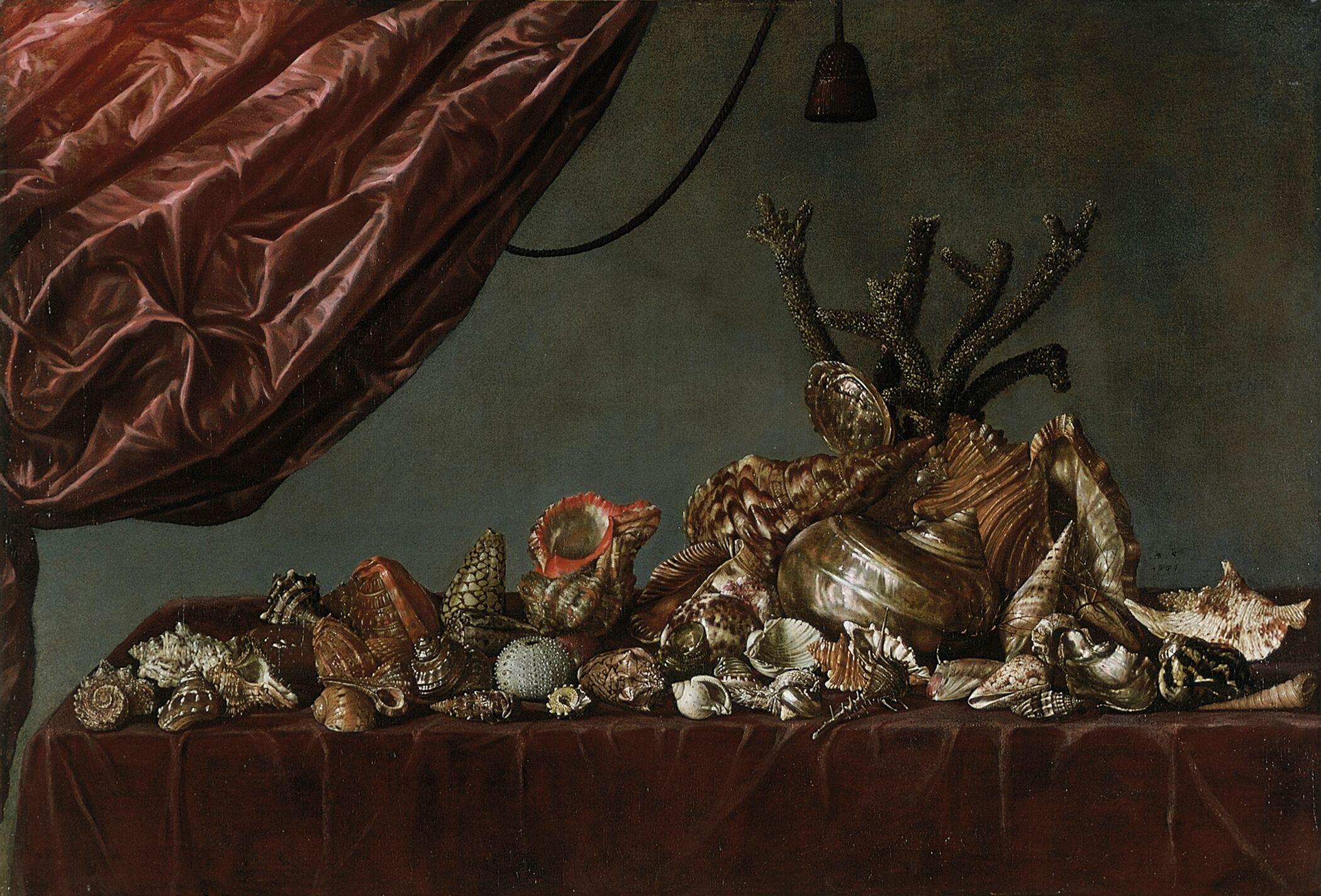 5 AgeRembrandt-AbrahamSusenier-StillLifeSeaShells-1659
