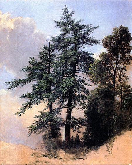 2 ABDurand-Trees-Newburgh