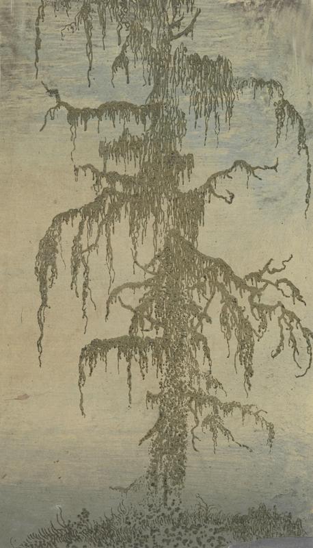 2 Seghers-MossyTree