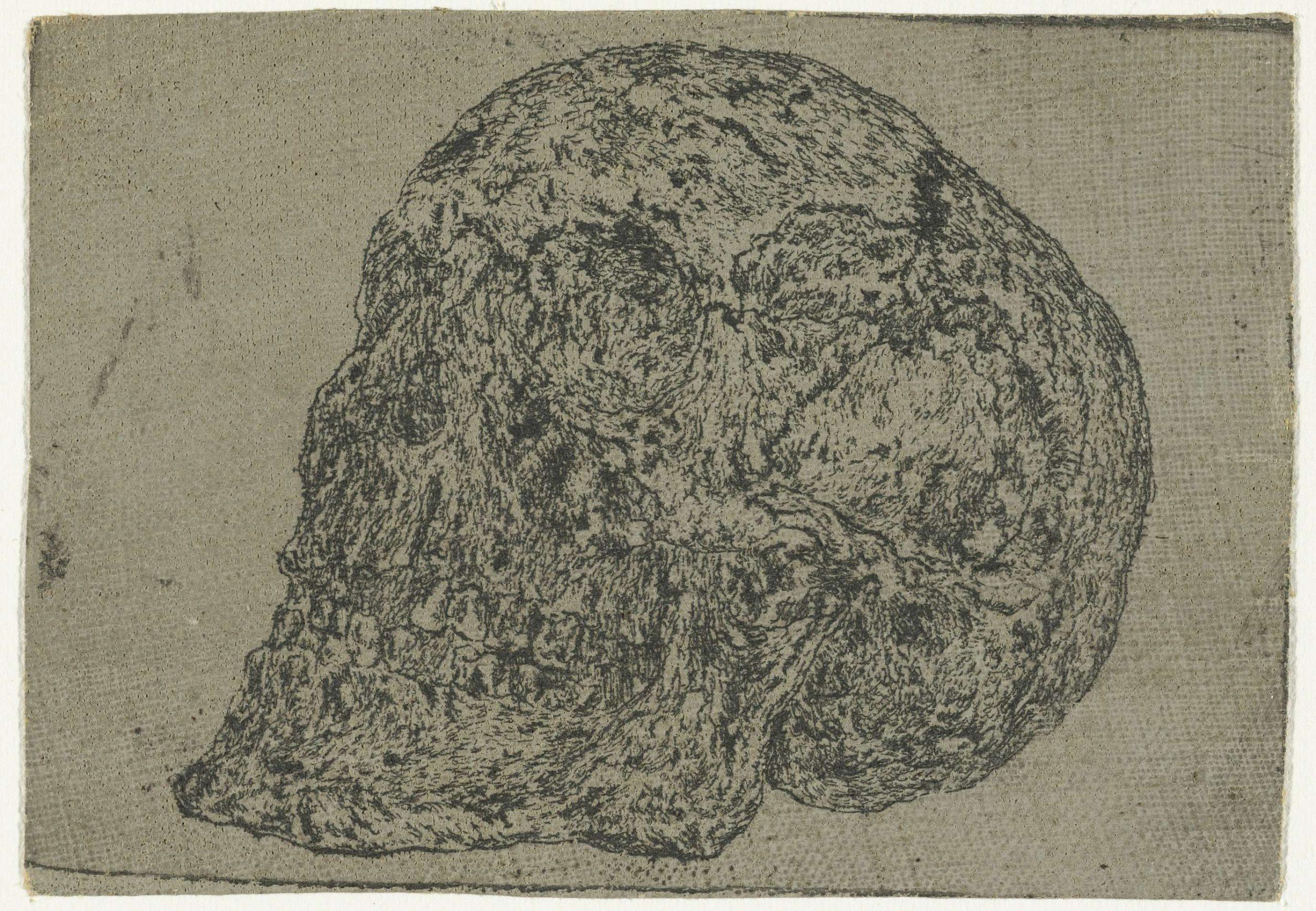 3 Seghers-Skull