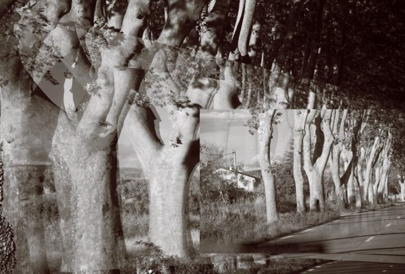 """Bodies Impossibly Merged: Kent Krugh's """"Under the Influence:  Beauty and the Surreal in France"""""""