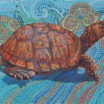 """Ⓒ Leslie Shiels, Cryptic Turtle Right"""""""